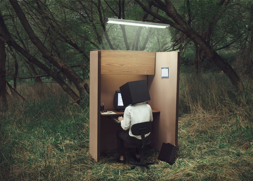 Untitled (cubicle).