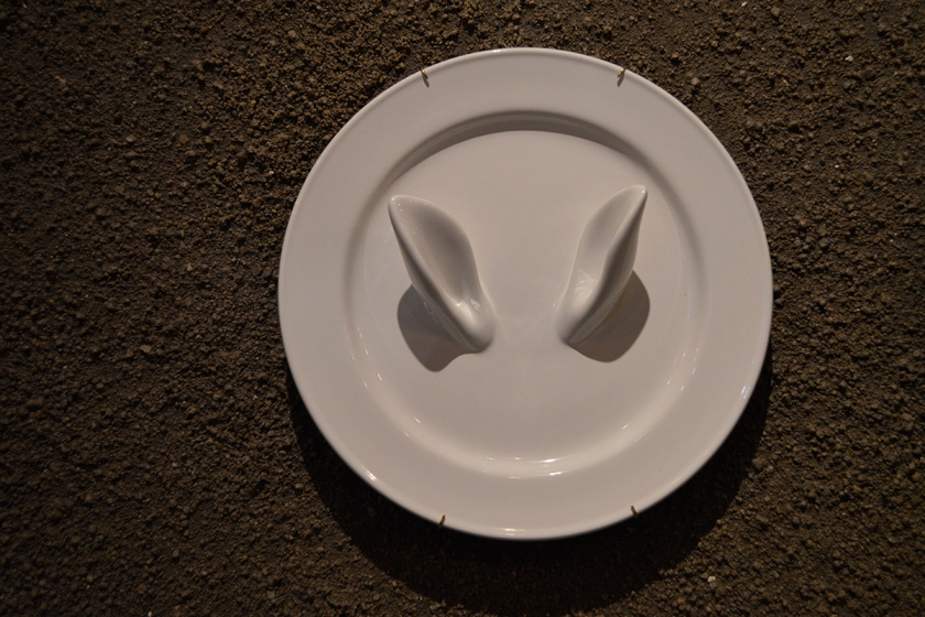 Curiosity, decorative plate, Sam Baron for Petite Friture.