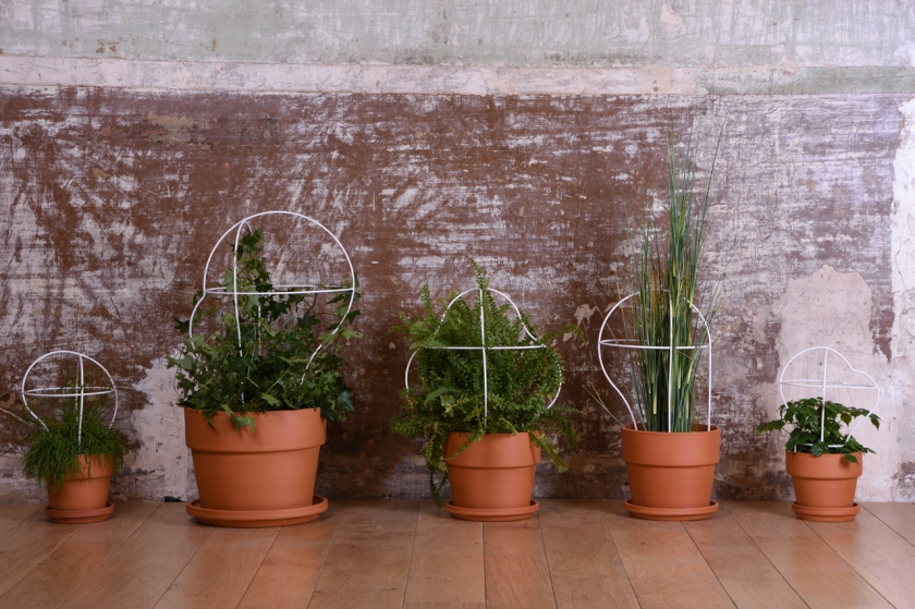 Outline, plant frames by Daniel Rous for Eno Studio.