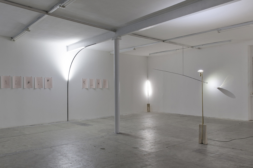 Anno Tropico, Room 1, 2016 Installation view