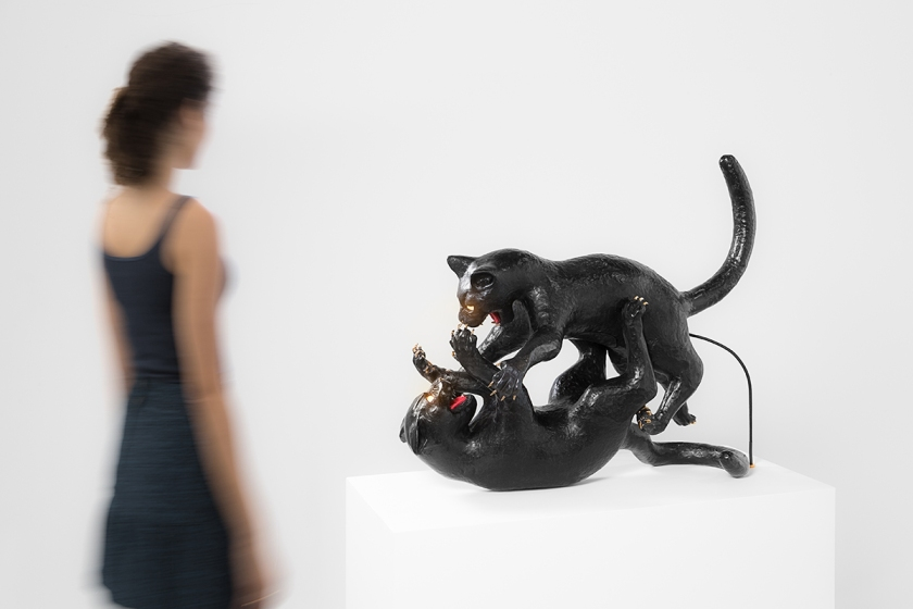 Studio Job, Cat Fight, 2014.
