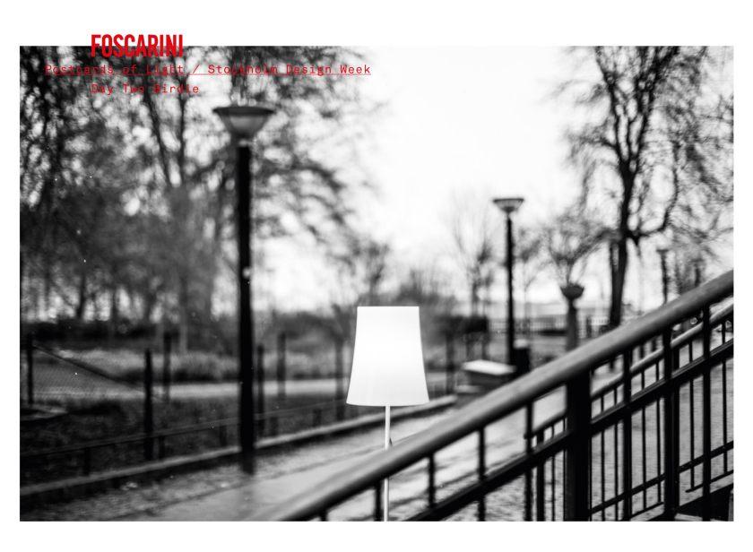 postcards-of-light_birdie